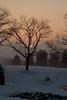Snow,fog,creek,trees,pond 2-14-13©DonnaLovelyPhotos com-0451-2
