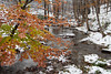 snow and winter, Bucks County, PA_ 11-12_DonnaLovelyPhotos com-8661