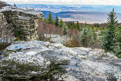 Dolly Sods Winter View