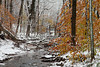 snow and winter, Bucks County, PA_ 11-12_DonnaLovelyPhotos com-8657