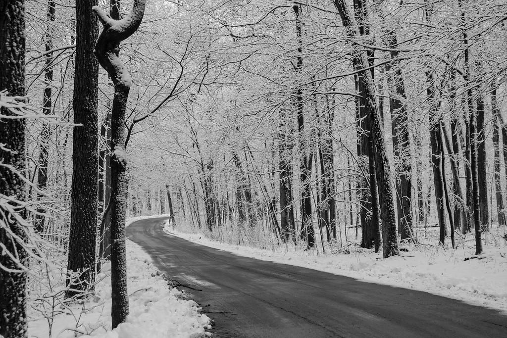 """winter road"""