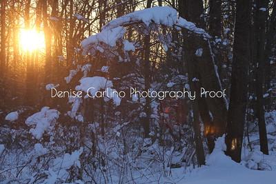 Winter Day Break