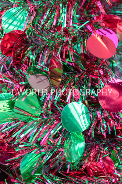 201912192019_12 Glen Ellyn Xmas Decor156--32.jpg