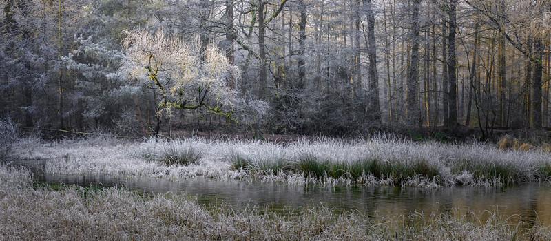 The Hidden  Pond PB9699.2021