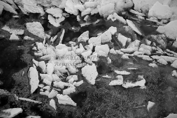 Ice in Delaware R 1-14©DonnaLovelyPhotos com-3777-2