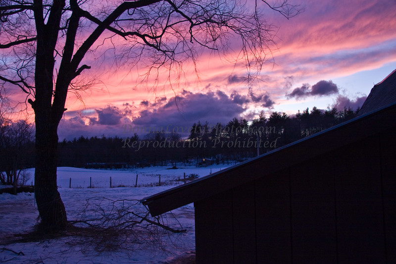 Vermont Winter Dusk with Barn and Tree