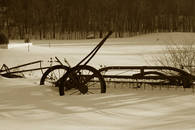Old field tiller
