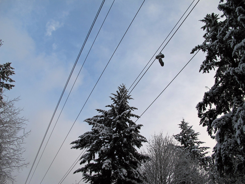 On the Tolt Pipelline Trail. Note one of the many pairs of shoes hanging on the high voltage wires.<br /> <br /> Na szlaku Tolt Pipeline. Jedna z wielu par butow wiszacych na drutach z wysokim napieciem.
