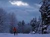 Running with a dog on the Tolt Pipelline Trail. Twilight.<br /> <br /> Na szlaku Tolt Pipeline, facio biegnie z psem. Zmierzch.