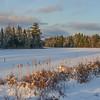 Chicken Mill Pond, Gouldsboro, Maine