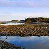 Schoodic, Acadia National Park.