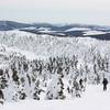 Partway up Mt. Logan