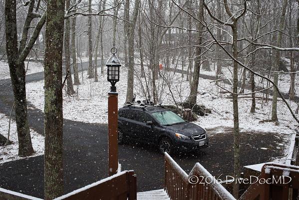 Wintergreen March 2016