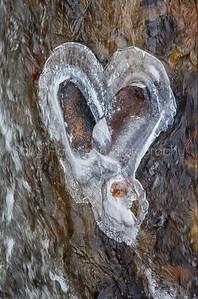 Heart of Galena Creek