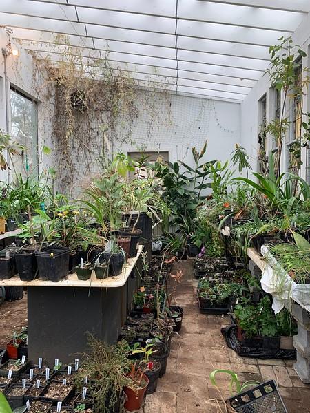 Greenhouse 3/16/19