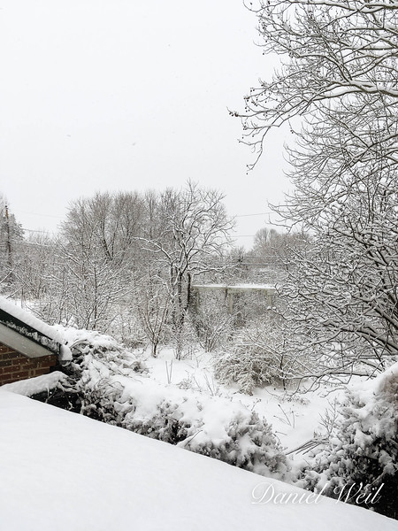 The snow-covered courtyard
