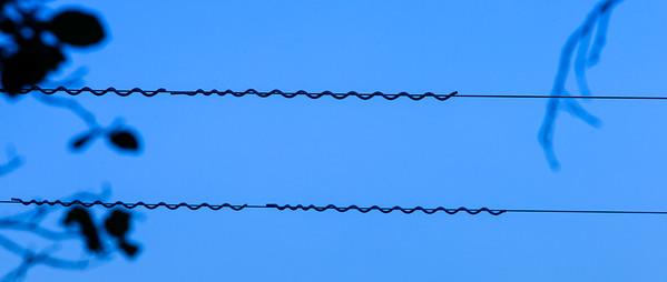 Wires, Almaden Quicksilver County Park, California, 2010