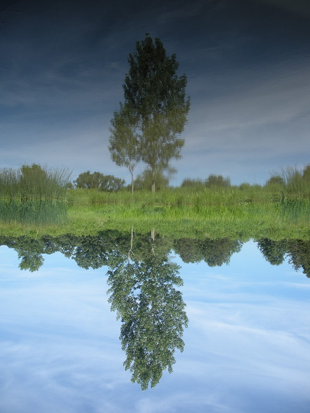 Reflections on Baraboo