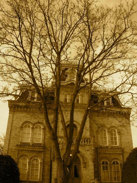 Madtown Mansion