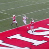 Badger Touchdown
