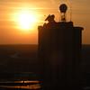 Skydeck Sunset