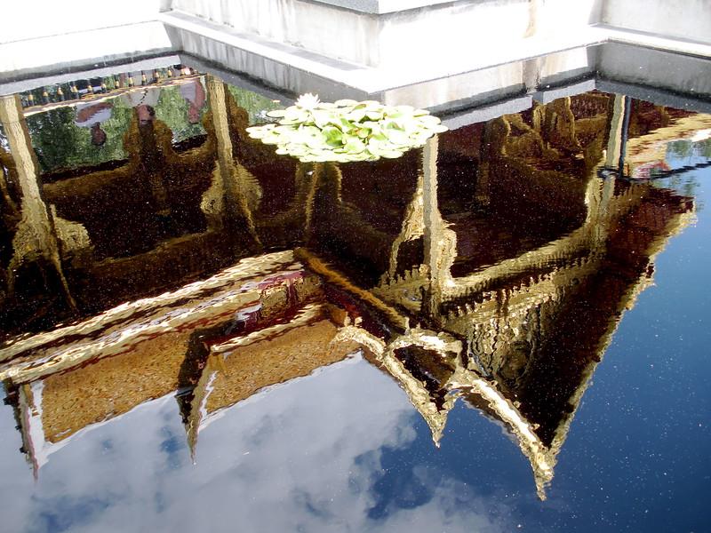 Olbrich Reflection