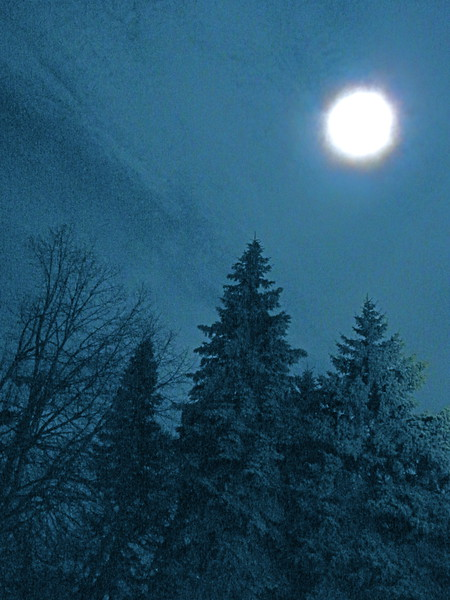 Madison Moon 2