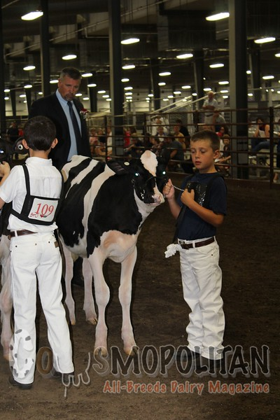 Wisconsin Championship Shows16