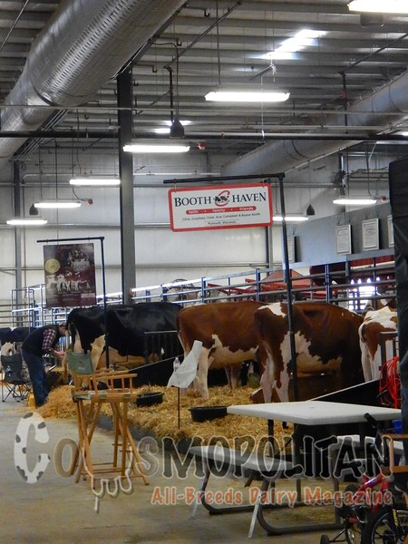 Wisconsin Dairy Showcase 2016