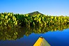 On the Canoe Trail at sunrise... Perrot State Park Wisconsin. Tempealeau Mountain in the background.
