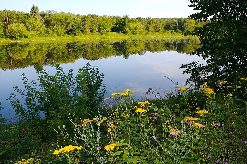 St. Criox River sunrise. I used the flash for the flowers.