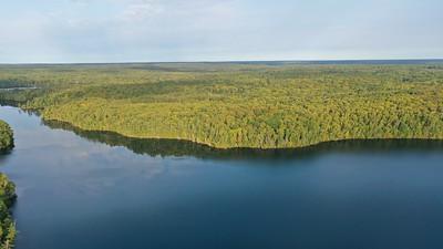 Lake Owen Hardwoods