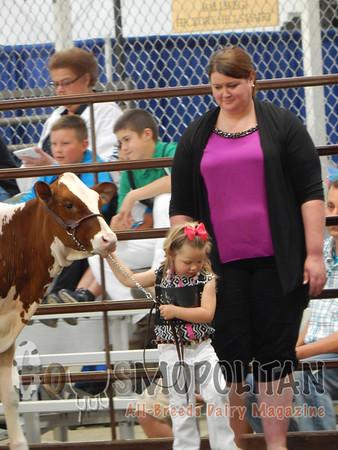 Wisconsin State RW Holstein 15