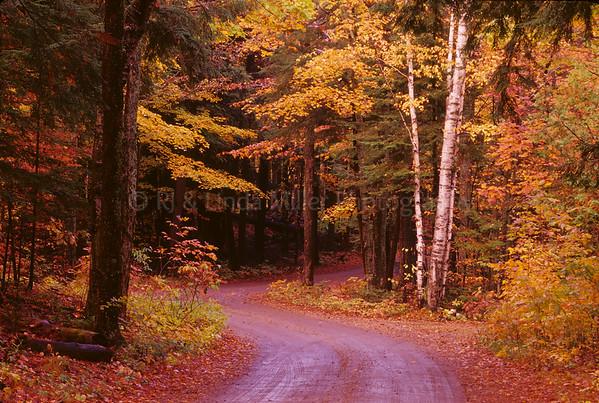 Door County Road
