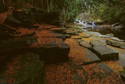 WI050163 Manitowoc County - Devil's River