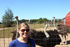 Nikki with the ostriches