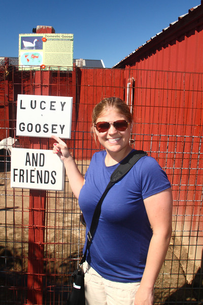 Lucey Goosey and the Goose and Friends