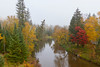 A small stream with fall foliage color and fog in northern Wisconsin, USA.