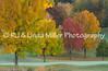 Fall Color on Golf Course, La Crosse County