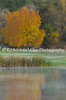 Fall Color on Golf Course, La Crosse County