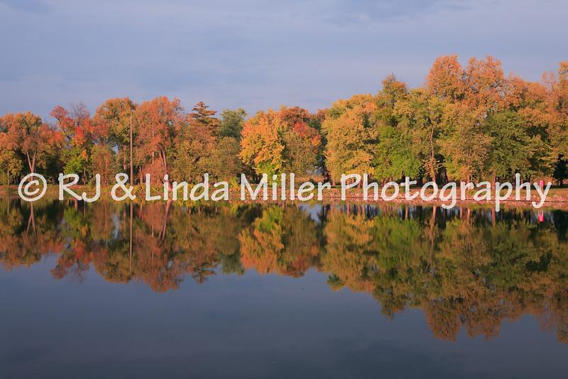 Pettibone Tree Reflections
