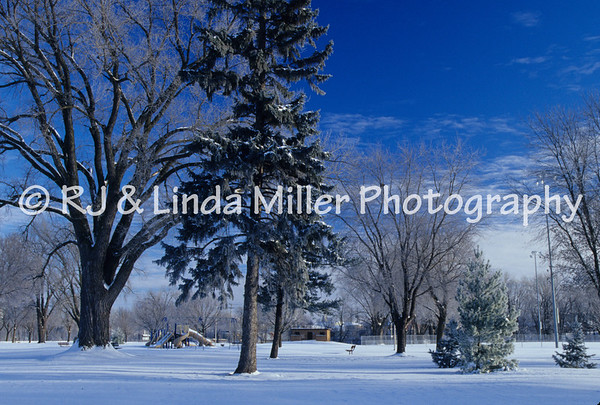 LX00070800 - La Crosse - Houska Park - Winter
