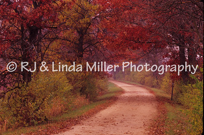 LX0010131 Lax - Lax River Trail Fall