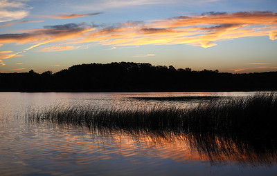 Persistance - Crooked Lake (Kettle Moraine State Forest - Northern Unit)