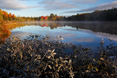 Autumn Warmth - Mystery Lake (Northern Highland American Legion State Forest - Wisconsin)