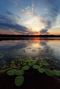 Padded - Long Lake (Kettle Moraine State Forest - Northern Unit)