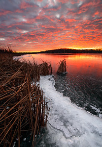 Dragon's Breath - Long Lake (Kettle Moraine State Forest - Northern Unit)