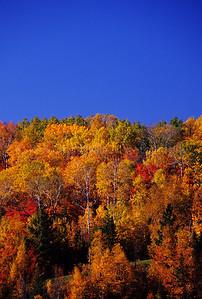 WI048409-00 Ashland - Fall Color on Hill