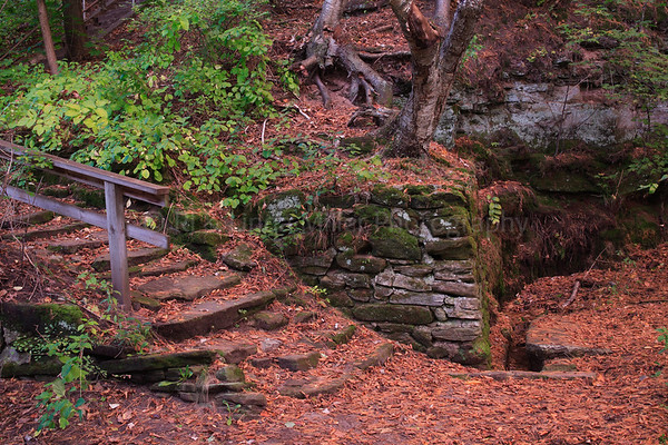 Trail and Stone Stairway in Irving Park