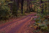 Douglas County, Access Road to Brule River